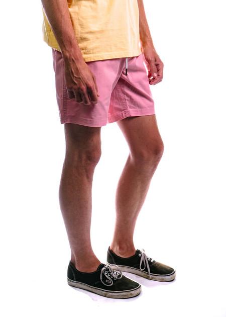 "Barney Cools Amphibious 17"" Swim Short - Pink"