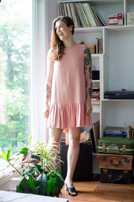Birds of North America Rosy-Finch Dress - Blush