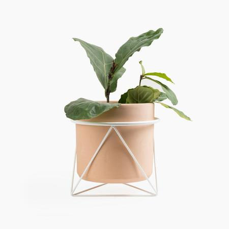 Eric Trine Octahedron Ring Planter in White