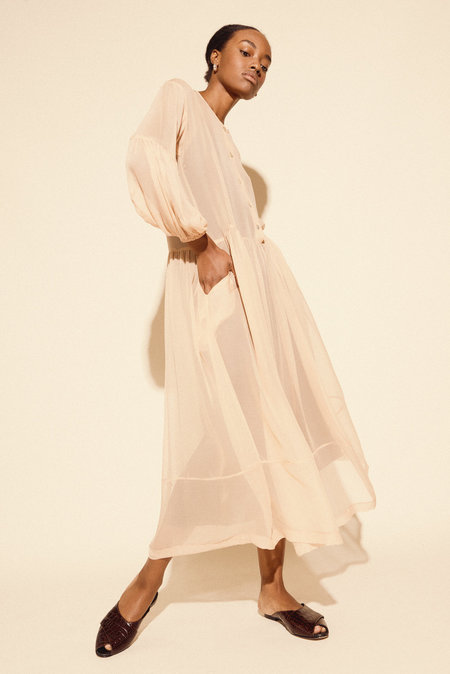 Kamperett Ferou Silk Chiffon Dress in Blush