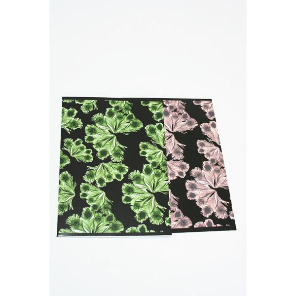 Ivana Helsinki Notebooks